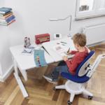 moll katalog 2017 16 Champion geraeumig - Delso - dětský, kancelářský a bytový nábytek