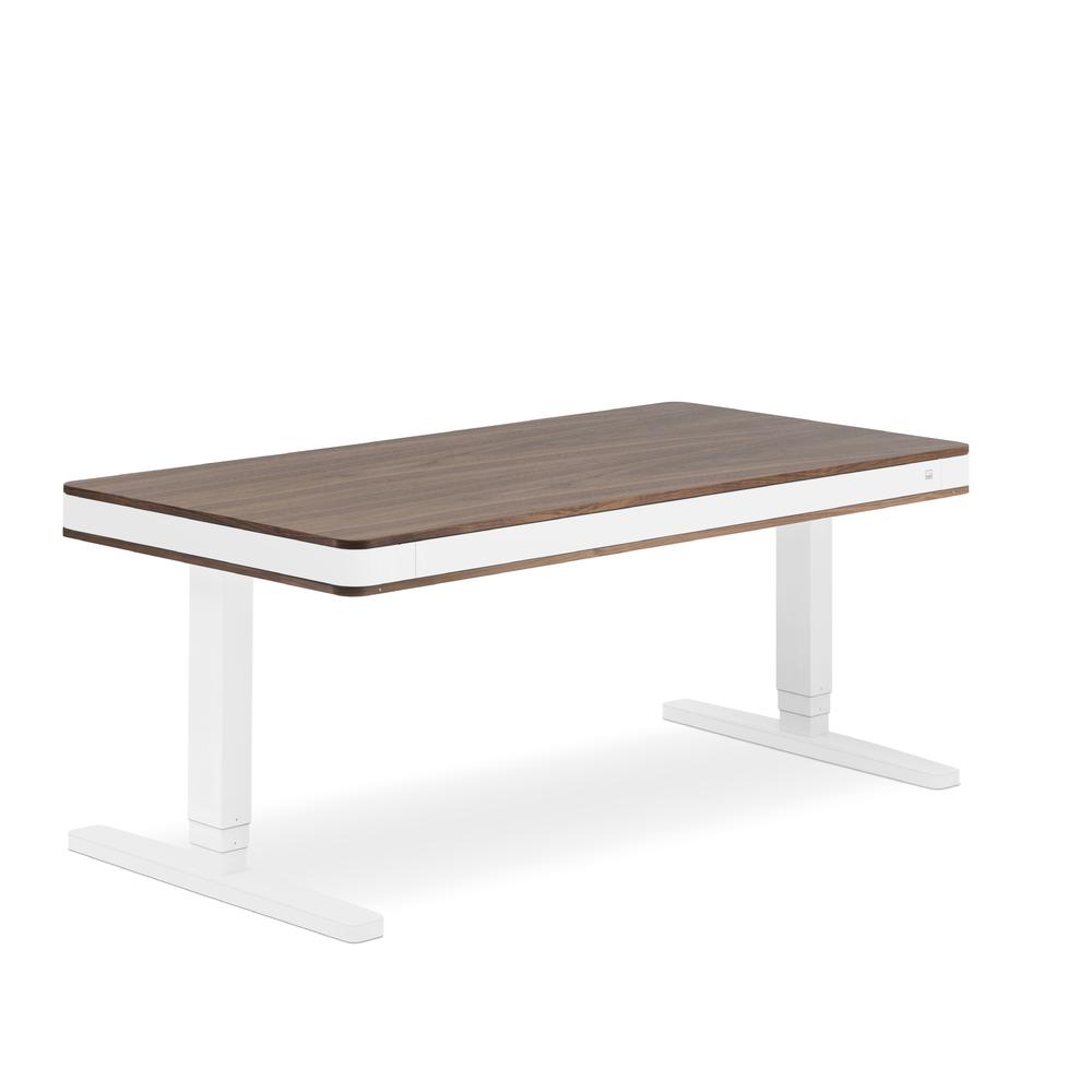 Designschreibtisch moll T7 XL exklusive Nussbaum - Delso - dětský, kancelářský a bytový nábytek